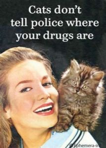 """Cats Don't Tell Police Where Your Drugs Are."" Funny Steel Fridge Magnet (ep)"